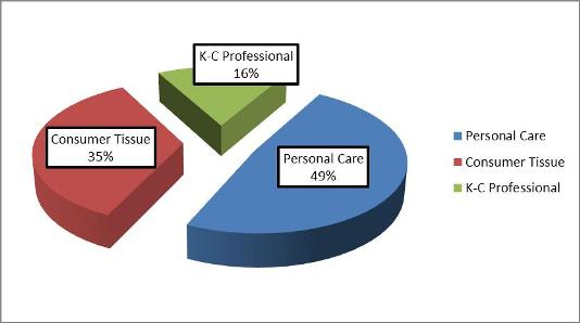 KMB stock analysis: segment revenue