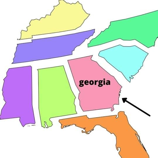 pros and cons of living in Georgia